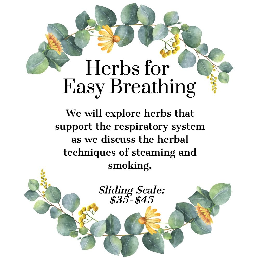 Herbs for Easy Breathing Respiratory Health