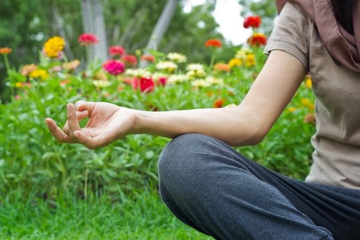Garden Meditation Plant Spirit