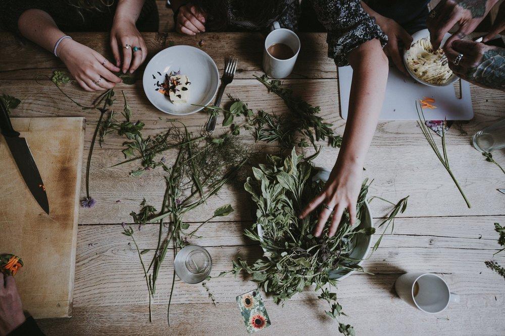 Herbalism 101.jpg