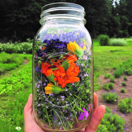 Bright Jar of Herbal Flowers in  field