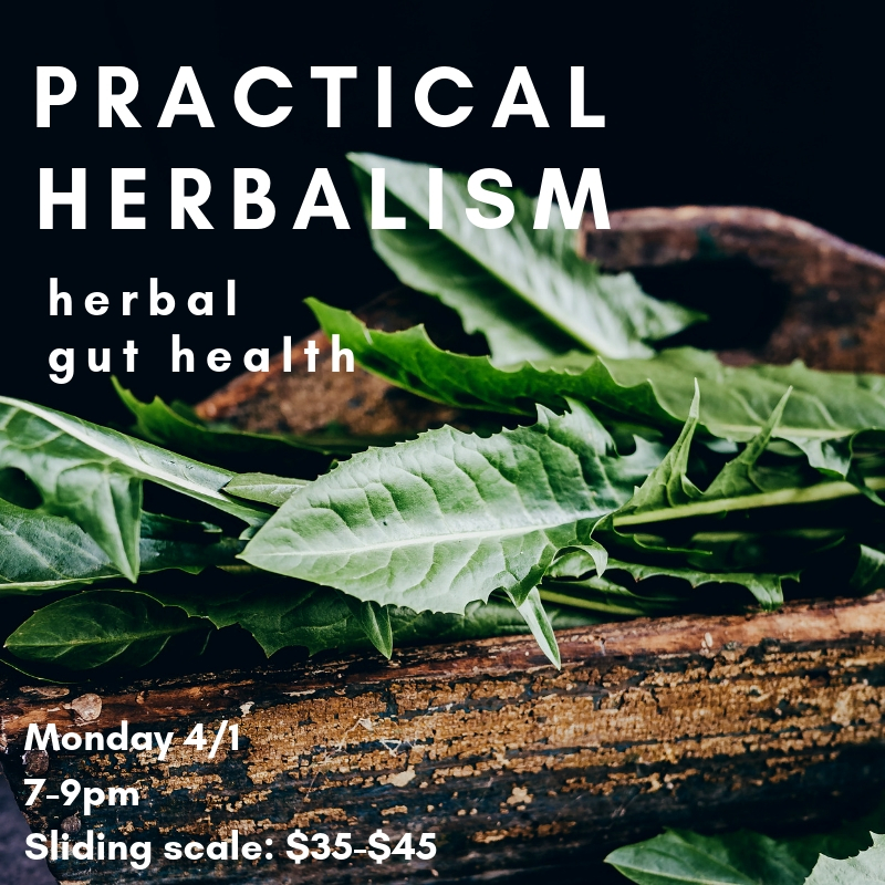 herbal gut health