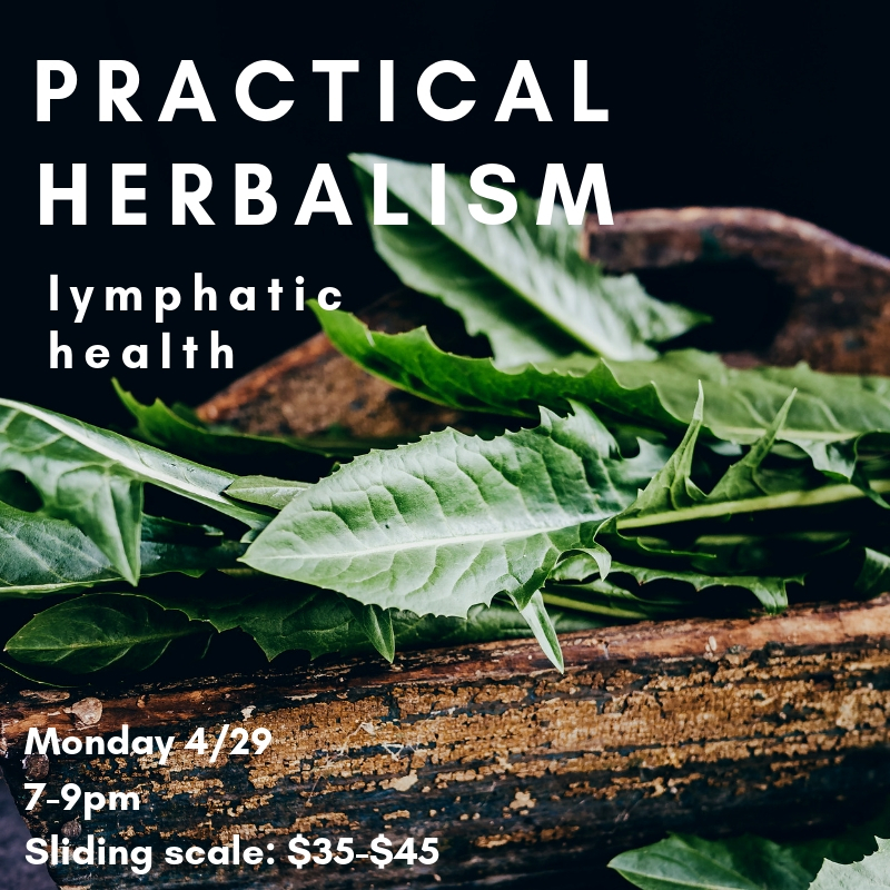 herbal lymphatic health