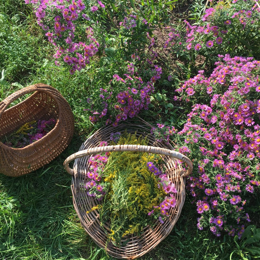 Wild Asters & Goldenrod, all your arms can hold…
