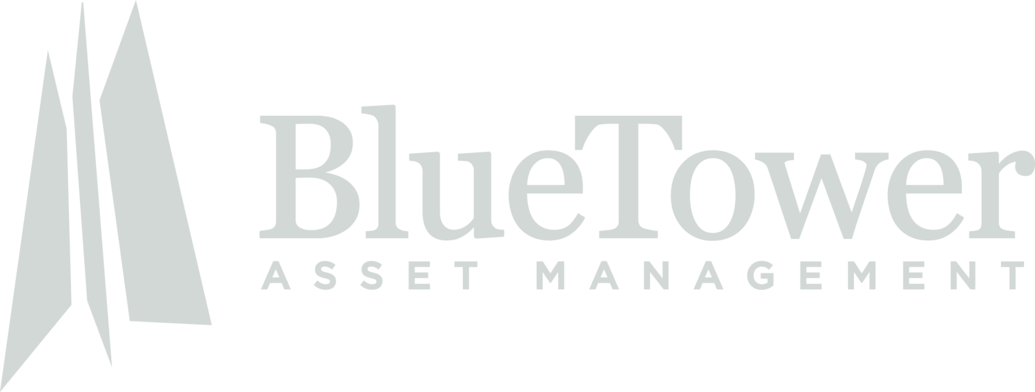 Blue Tower Asset Management | Concentrated value investing