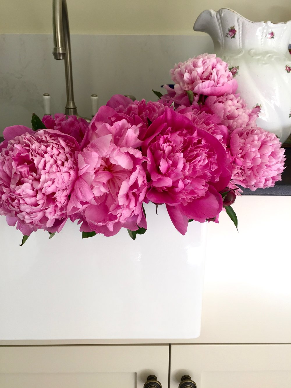 Peonies from the Market