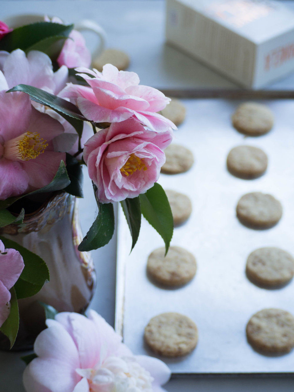 Panela Sugar Shortbread and Homegrown Camellias