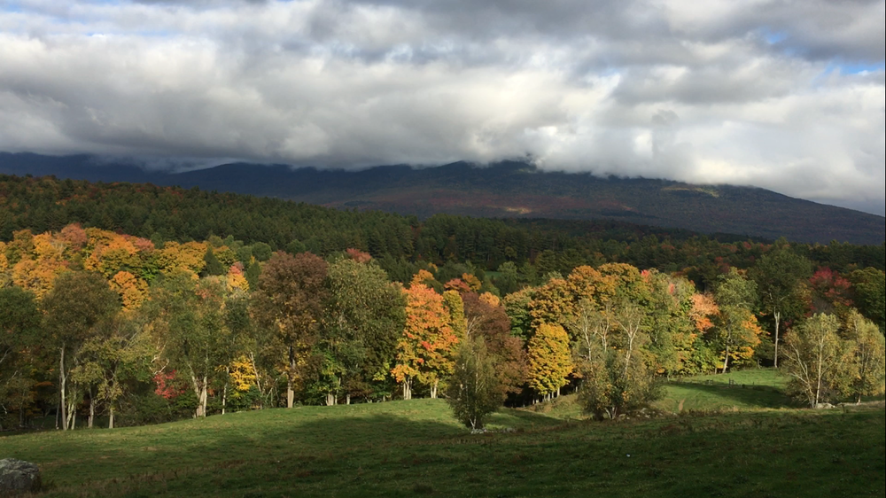 Fall in Vermont: Ironwood Style