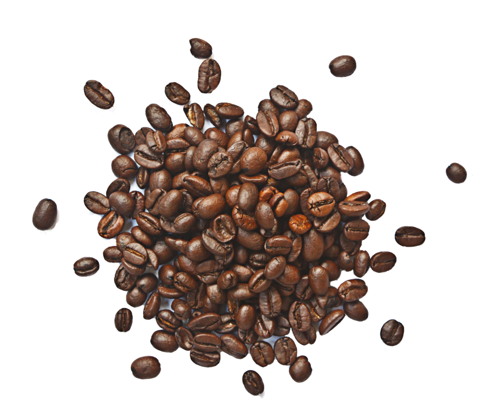 The humble coffee bean