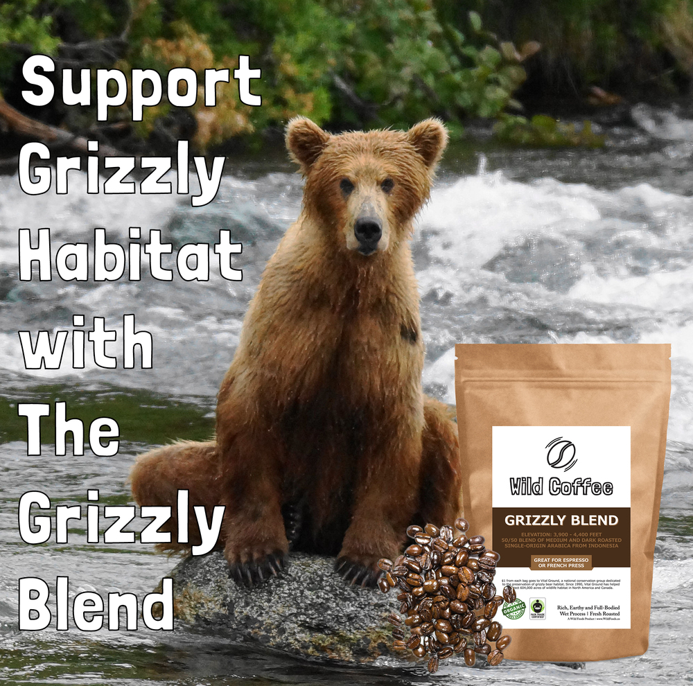 Support Grizzly Habitat