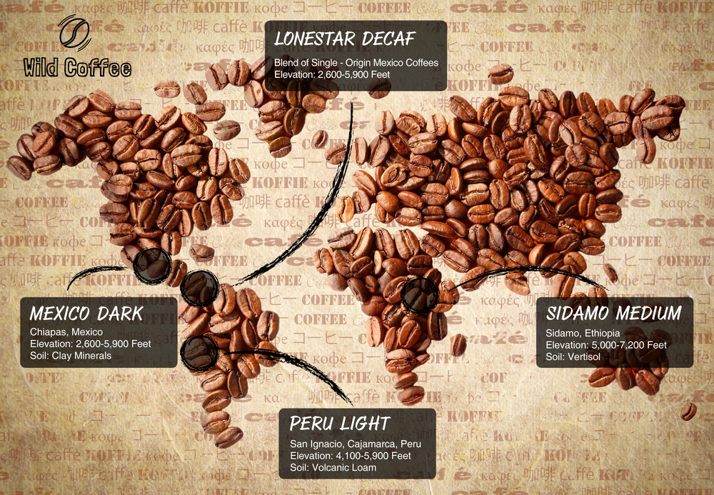 where wild coffee beans come from