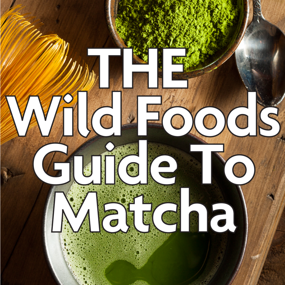 matcha guide poster for website-11.png