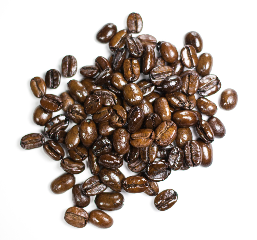 Grizzly-Blend-Wild Coffee-Organic-Fair-Trade-Coffee-Beans.jpg