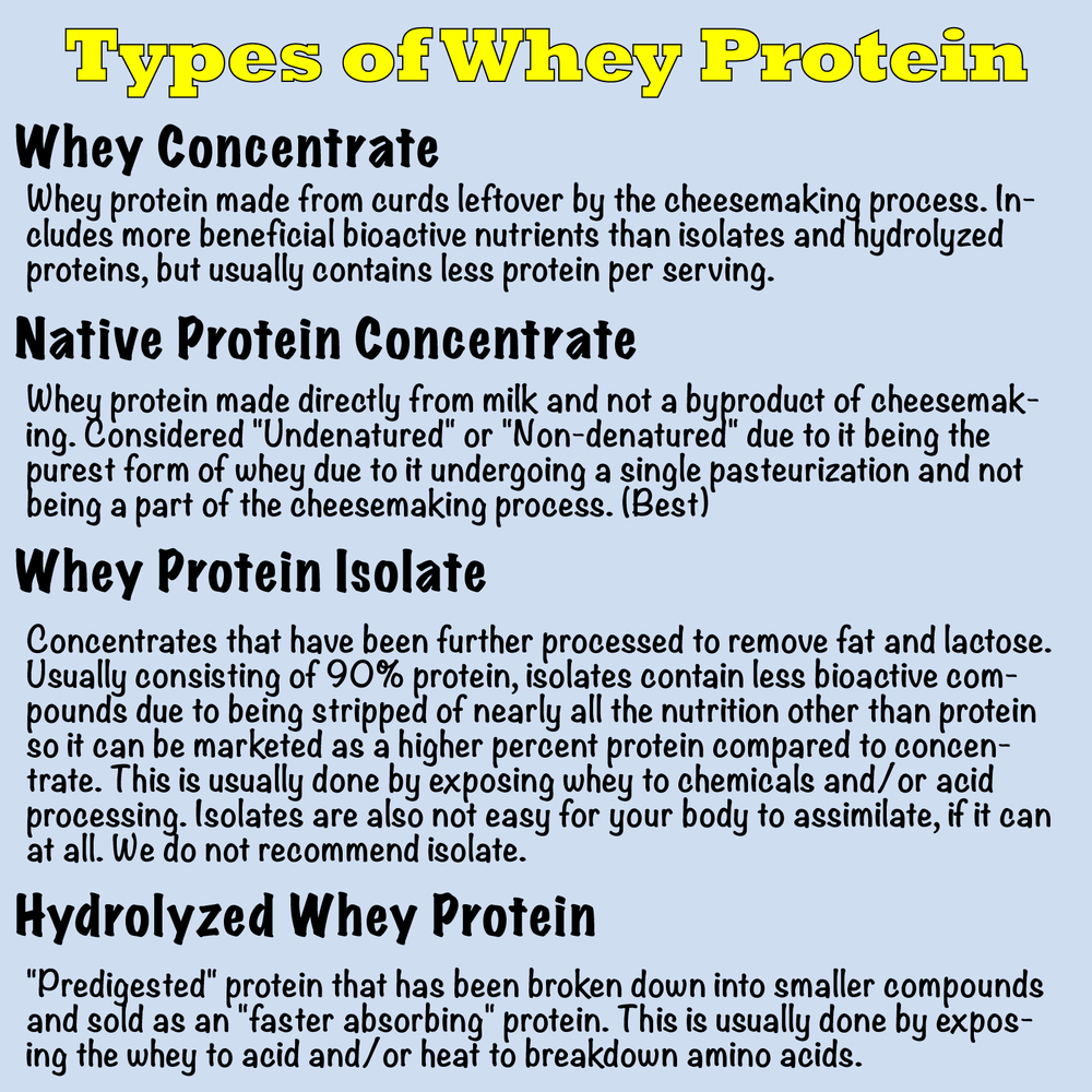 the different types of whey protein - what's in your whey?