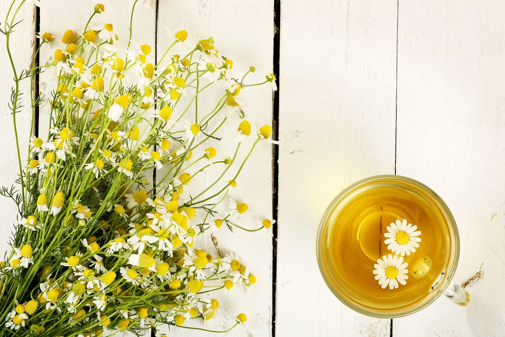 chamomile tea for anxiety, stress and sleep
