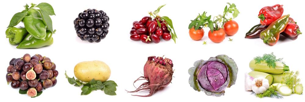 eat wild food real food diet