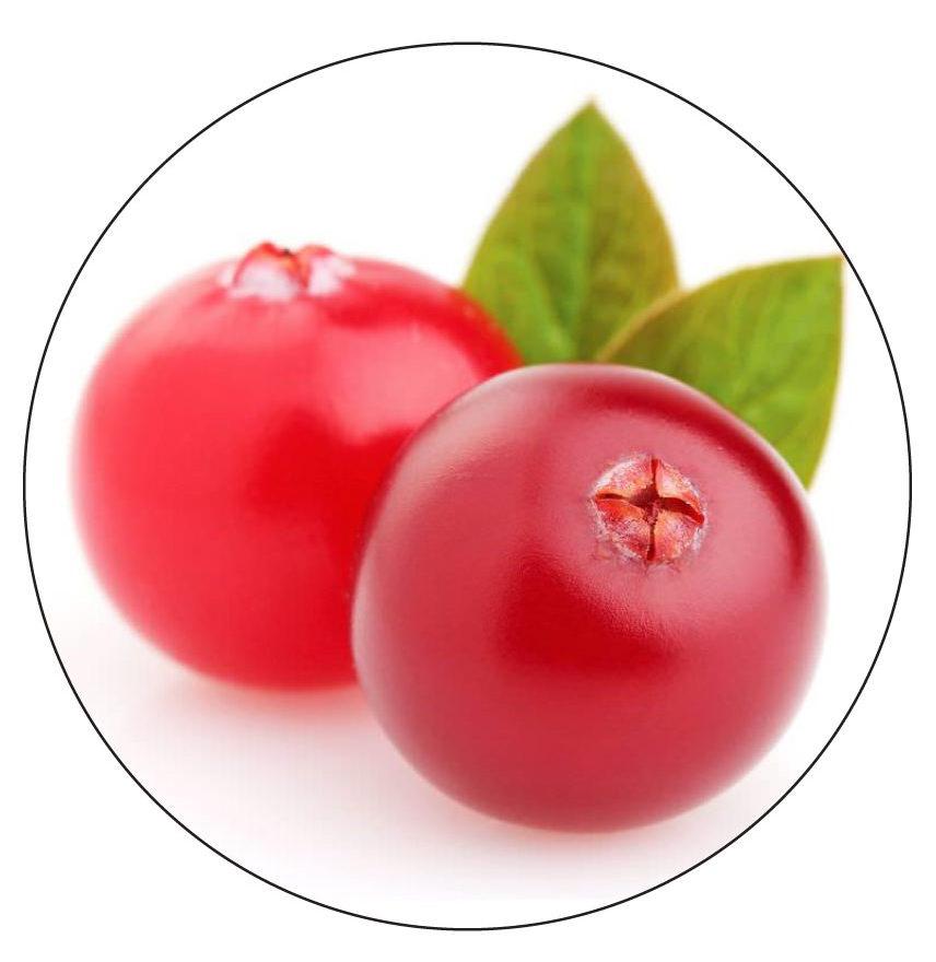 cranberry organic