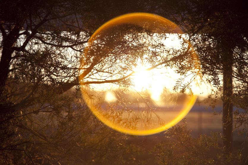 sun ring.jpg
