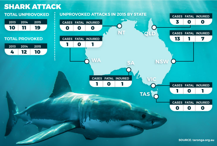 shark-attacks2.jpg
