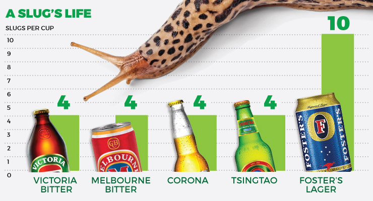 slugs2.jpg