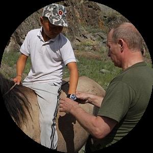 Putin Watch 2.png