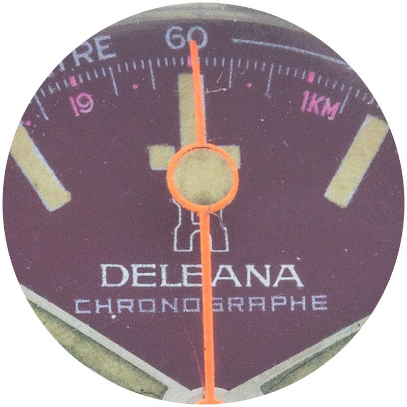 Delana macro circle 3.jpg