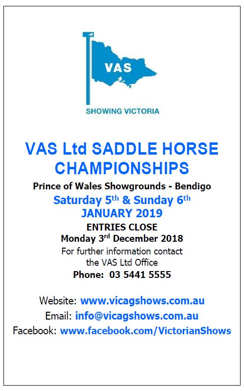 Saddle Horse Advert 2019.JPG
