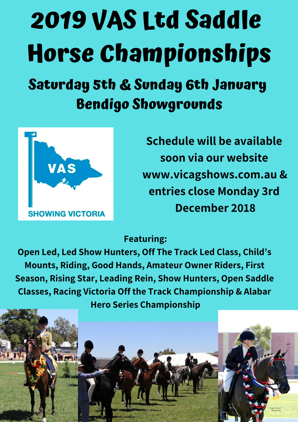 2019 VAS Ltd Saddle Horse Championships.jpg