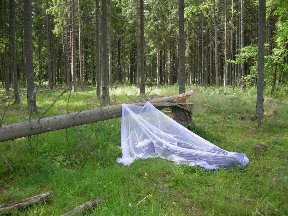 Så här har jag ofta bott under mina fältstudier. Om det regnar i tält - annars med myggnät under öppen himmel. Ibland untan myggnät. Denna bild är tagen en bit söder om Skövde. Jag hade arbetat ett pass i Skövde fram till 0400 och skulle börja ett eftermiddagspass i Jönköping. Det var en fin ljus sommarnatt utan risk för regn och jag bestämde mig för att köra in på en skogsväg för att sova, men det fanns inga lämpliga träd... men detta funkade också bra!