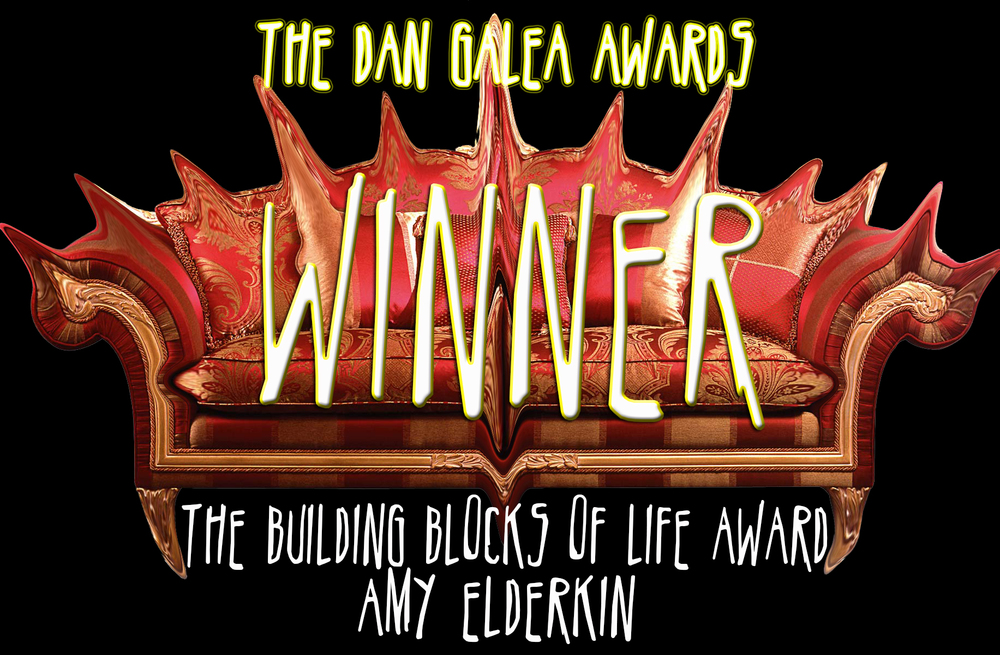 DGAWARDS Amy Elderkin.jpg