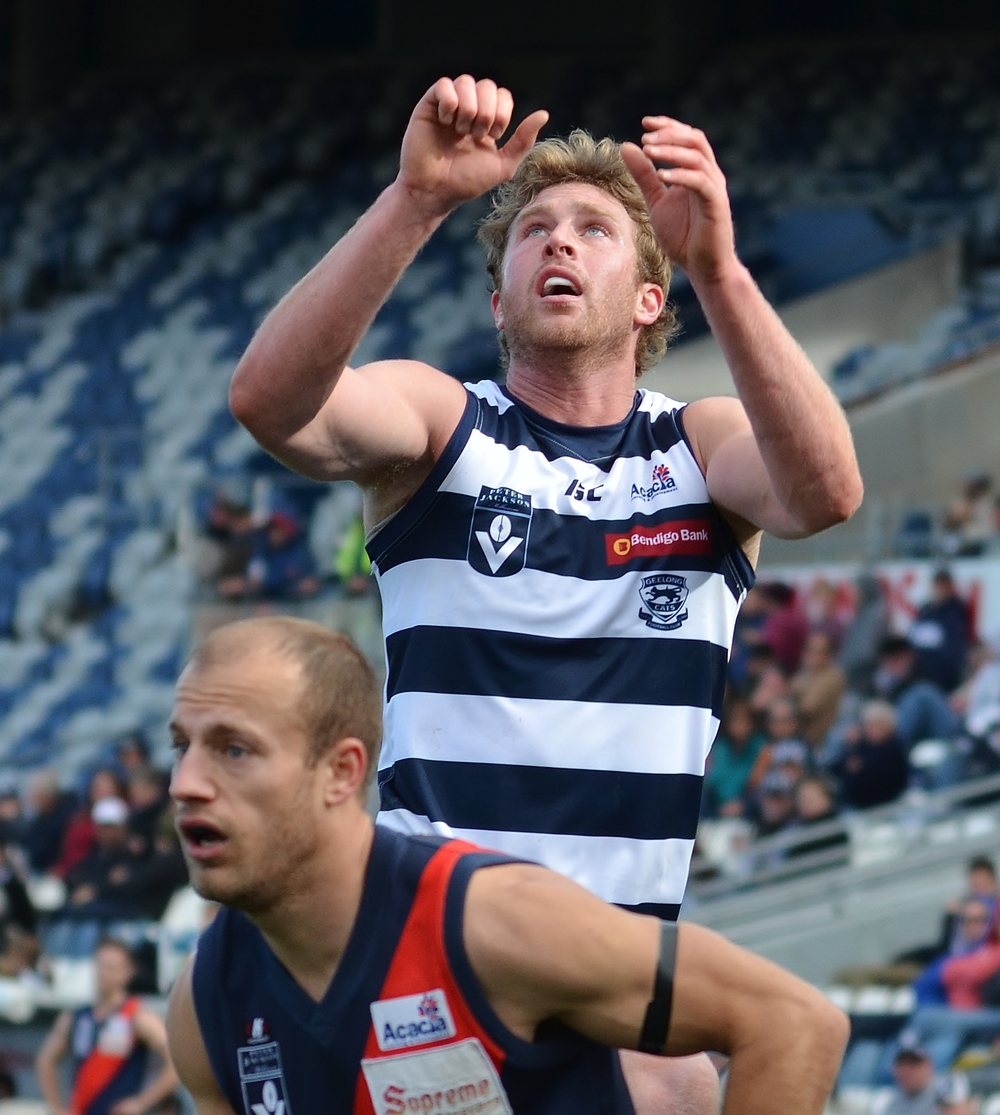 Dawson Simpson challenges for the ball for the Geelong Cats in the VFL. Image supplied by  Arj Giese