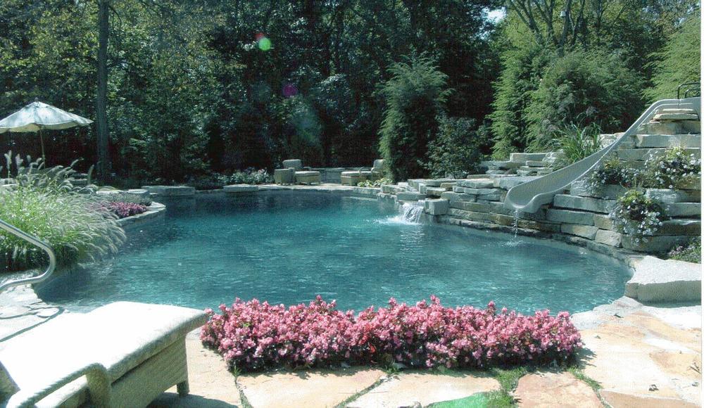 sachs pool annuals.jpg