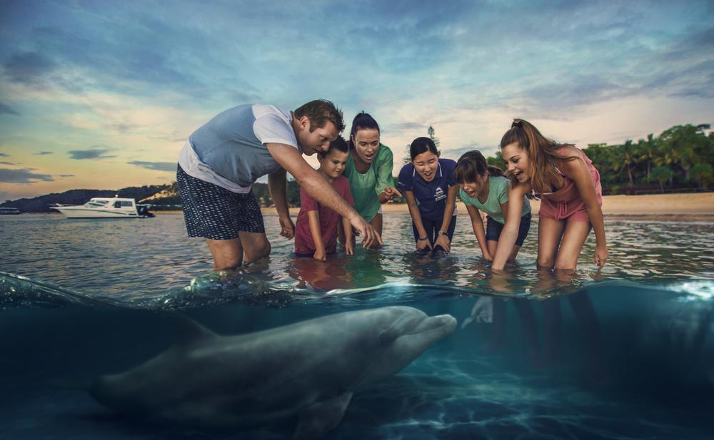 Dolphin+Feeding.jpg