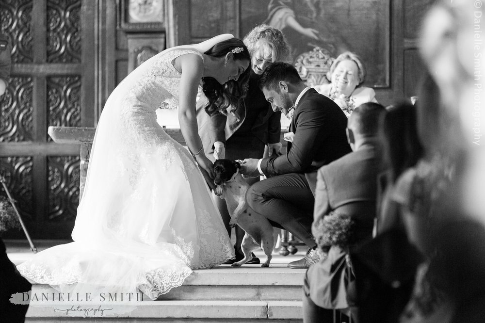 dog is the ring bearer at ingatestone hall wedding ceremony