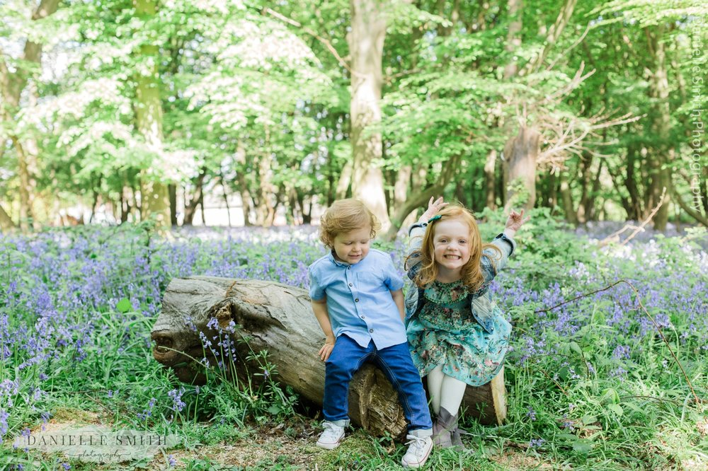 brother and sister sitting on log in forest - bluebells family photos