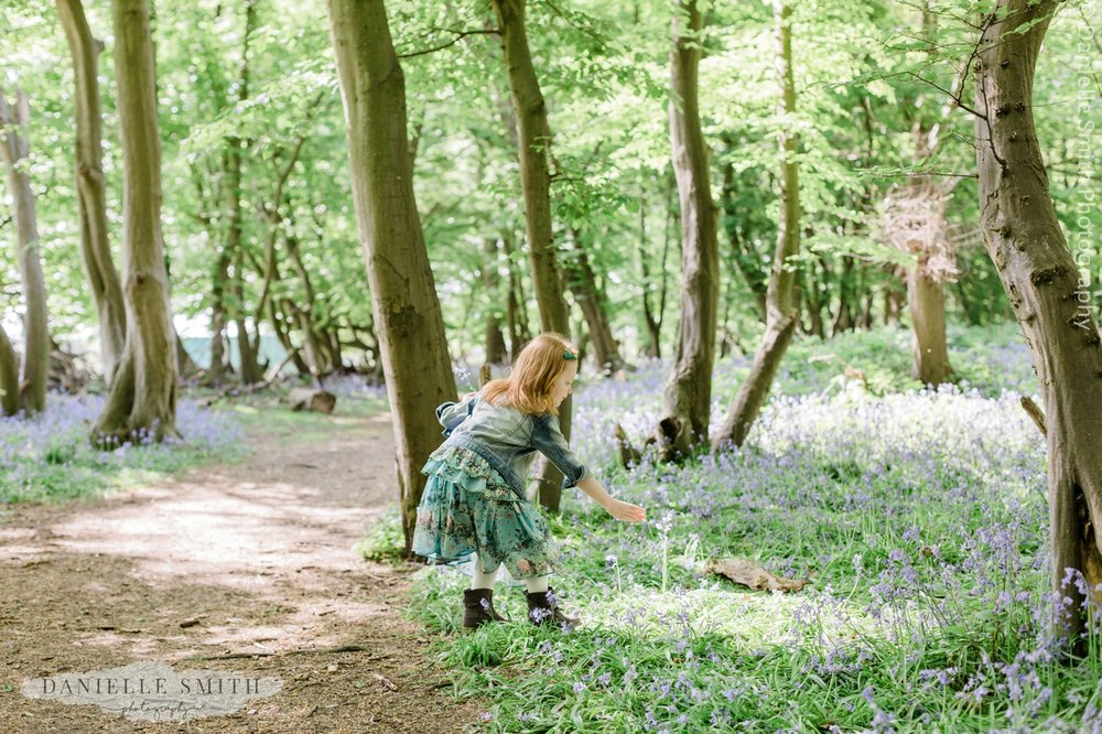 girl picking bluebells in forest