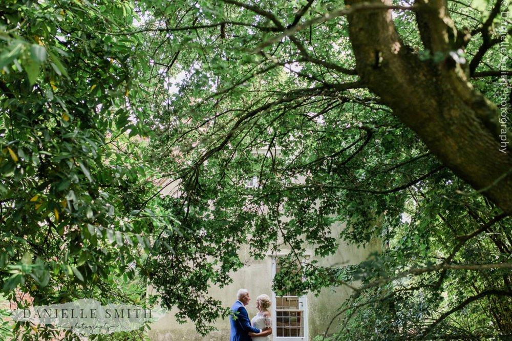 bride and groom under huge tree