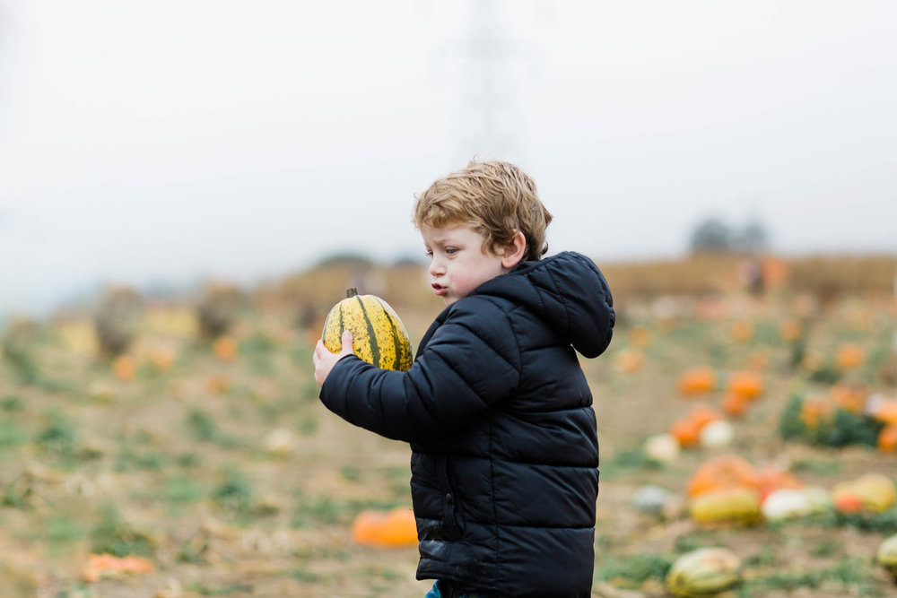 boy holding pumpkin - pumpkin patch family photography