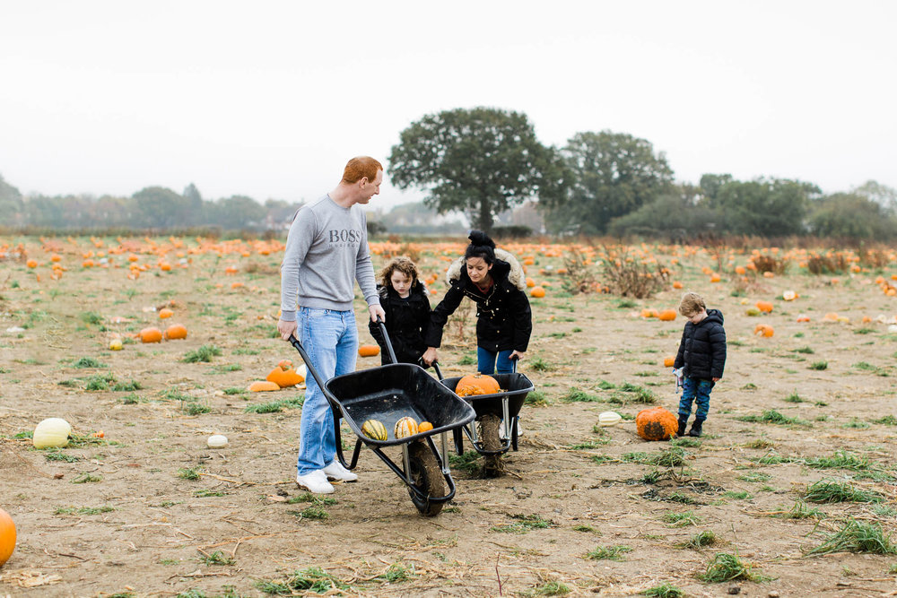 family pumpkin picking - essex family photography