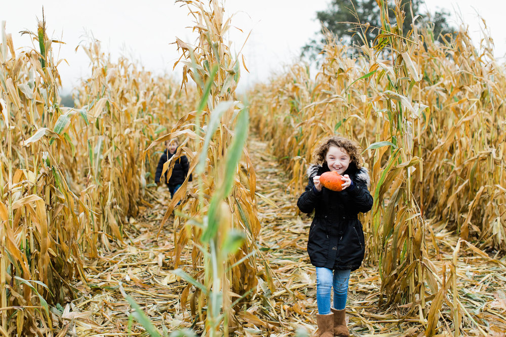 girl with pumpkin in cornfield
