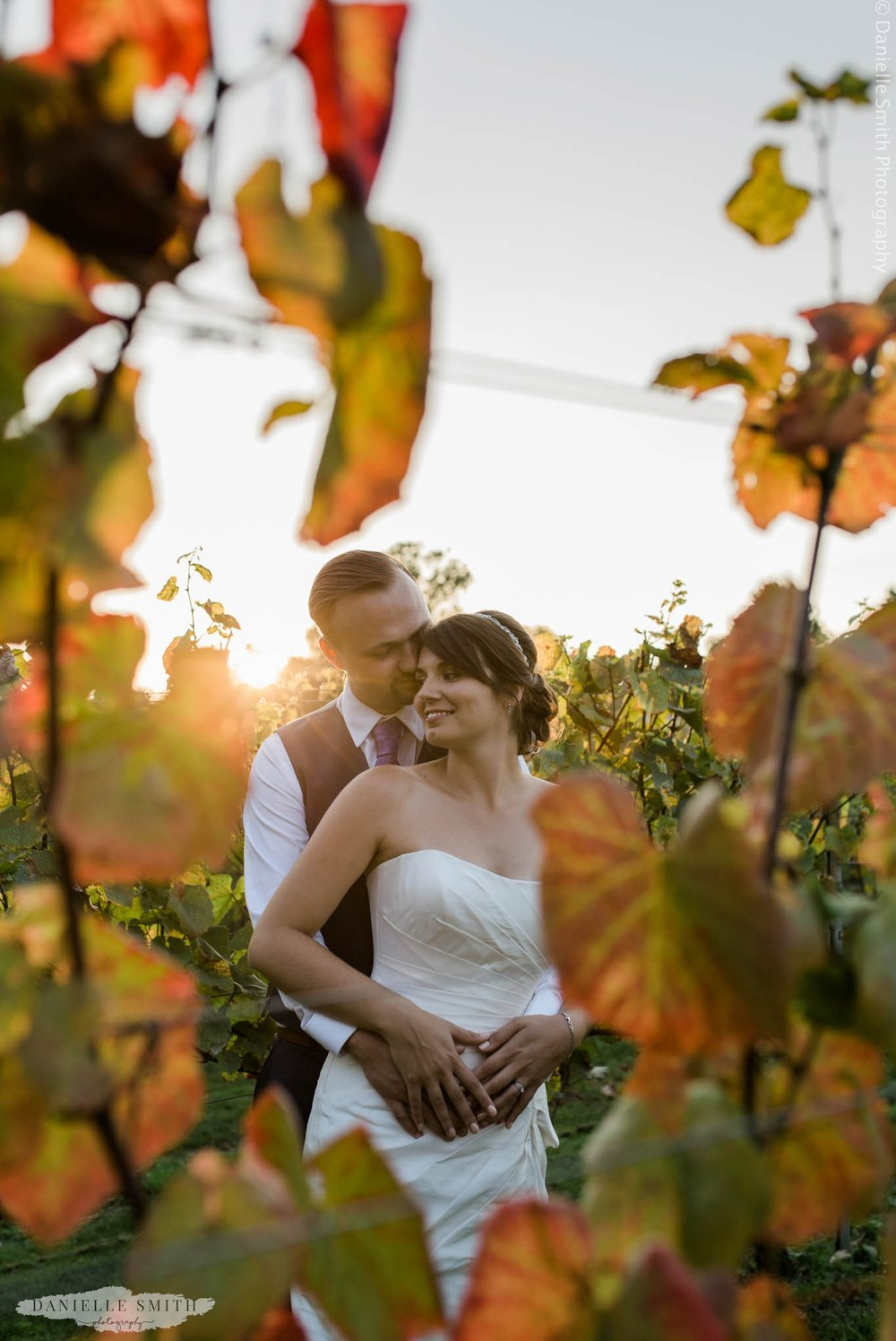 bride and groom in vineyard during sunset