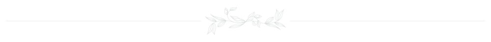 DS Logo-08.png