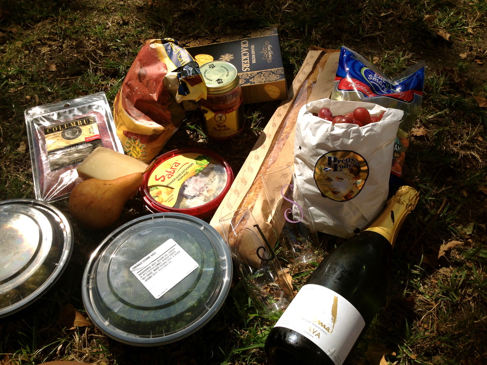 Lafayette Square, New Orelans--Birthday picnic spread with Josh!