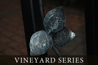 vineyard-series