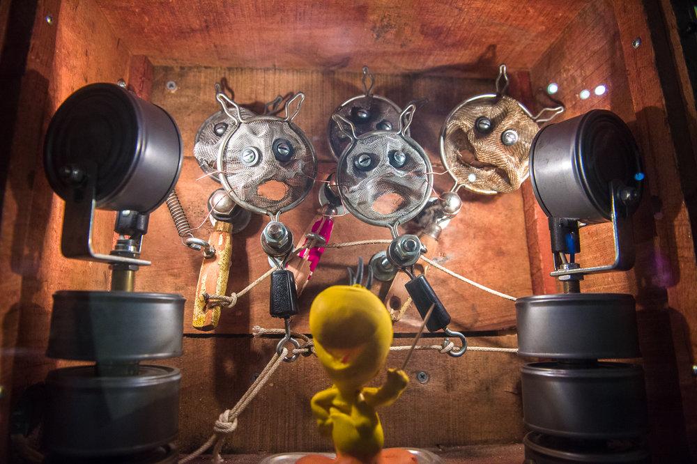 Cat Nip Choir-4.jpg
