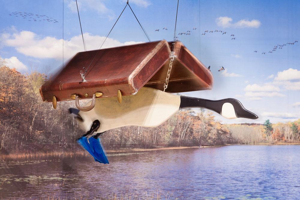 Flying Geese.jpg