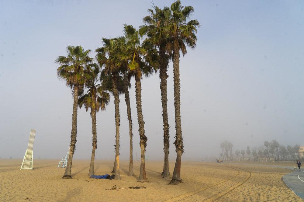 DT365 Santa Monica