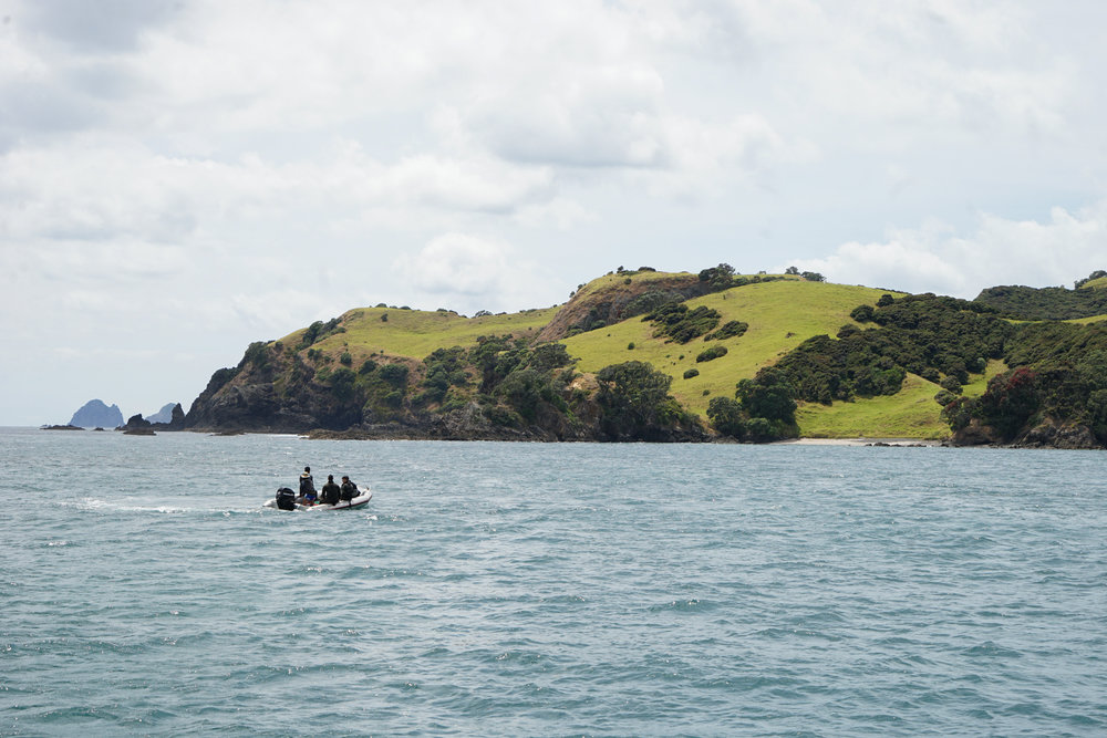 Daytripper365 Kauri Cliffs (8 of 33).jpg