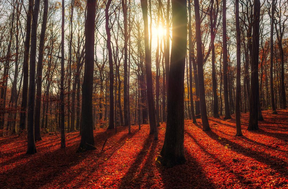 Bielańsko-Tyniecki Park Krajobrazowy  ,  zdjęcie trafia do galerii Krajobraz, klasyczny HDR z 3 zdjęć