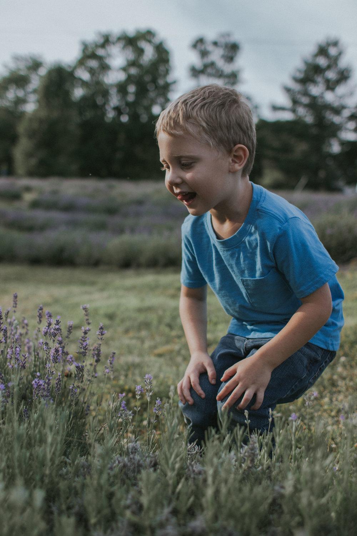 lavender farm-1.jpg