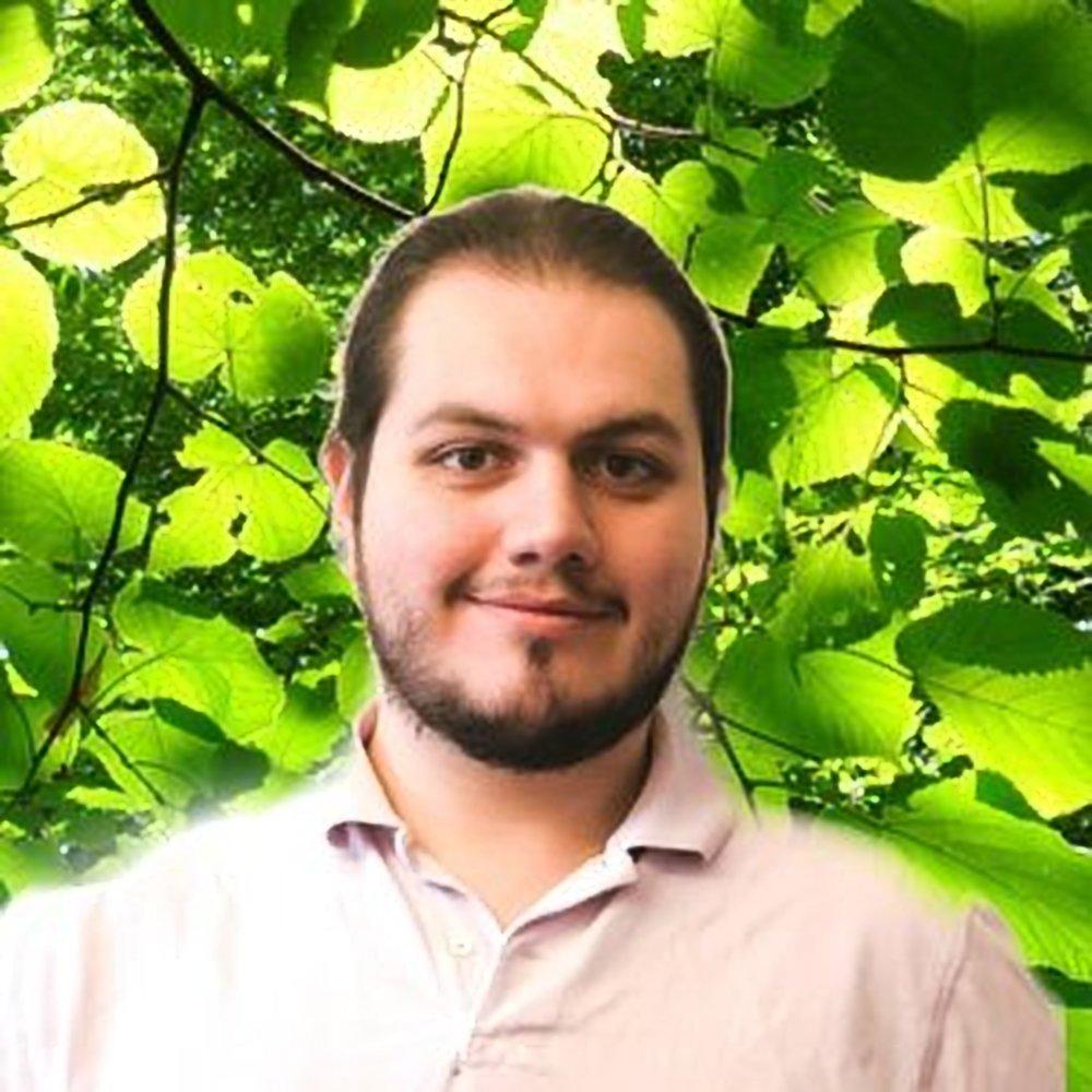 David (DFP) Phipps, Software Engineer